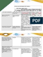 Plantilla de Información Tarea 2 (1)