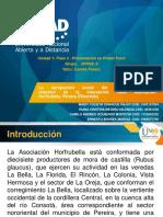 Unidad 1- Presentacion PowerPoint_Grupo_ 203029_6 (3)