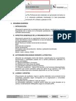 ESTRUCTURA INFORME.pdf