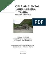 ResumenEjecutivoAA-Yamba.pdf