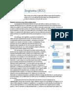 Bases del ECG.pdf