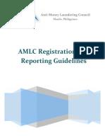 AMLCARRG.pdf
