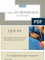 Cirugia Transnasal y Lifting Endoscopico