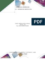 FASE 2 – ESTUDIO DE CASO DE LOLA _YURLEY AVELLA _GRUPO_ 216.docx