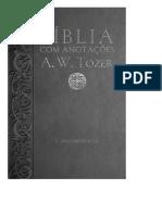 Biblia Com Anotacoes a.W.tozer.pdf