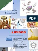 Biomoléculas Orgánicas-II (1)