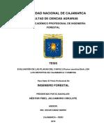 Evaluación de Las Plagas Del Capulí (Prunus Serotina Ehrh.) en Los Distritos de Cajamarca y Namor