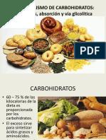 Cap3a.MetabolismoCHO.pdf