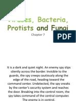 Unit 7 - Viruses Bacteria Protists and Fungi