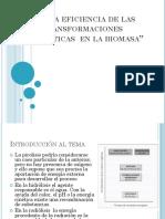 TRANSFORMACION ENERGETICA BIOMASA