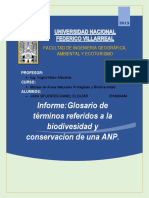 Primer Informe - Anp