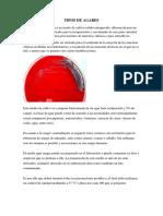 TIPOS DE AGARES.docx
