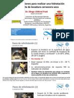 Hidratación de levaduras.pdf