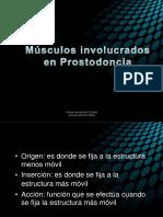 musculosinvolucradosenprostodoncia-111106012231-phpapp01