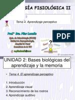 Aprendizaje_perceptivo_