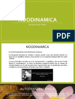 NOODINAMICA.pptx