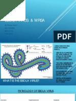 MRSA and Ebola Virus