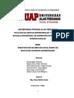 Brief Final-educación Superior (Universidades)
