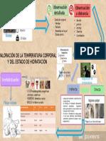 Infografia Semio