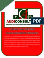 Buffet Auditoria Audiconsult Autoguardado