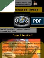 Biodegradacao Do Petroleo