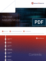 Identity and Access Management (IAM) Maturity Model