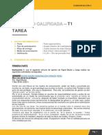 t1 Comunicacionii Yanqui Molloni Ines