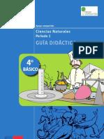 Guía didáctica 4 básico ciencias