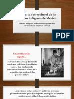 Dinámica Sociocultural de Los Pueblos Indígenas de México