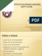 expo-de-eritropoyesis-2003-1219206939101550-9