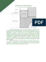 Topografia do aparelho psíquico