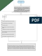 Mapa concptual (1).pdf