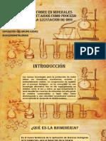 Biolixiviacion Del Cobre en Minerales Sulfurados Refractarios Como