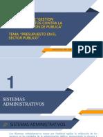 Clase Dos 05 de Junio, Presentacion Presupuesto en El Sector Publico Luz Laura