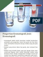 Presentation Kromatografi
