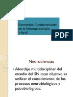 NeuroInf 3 Historia