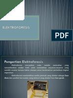 ELEKTROFORESIS +