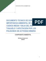 DOCUMENTO TÉCNICO DE SOPORTE SOBRE LA IMPORTANCIA AMBIENTAL DE LA CUENCA MEDIA Y BAJA DEL RIO TUNJUELITO