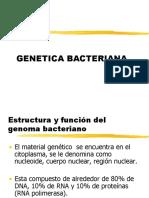 2.Genetica Bac