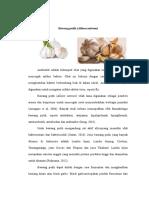 Tanaman Khusus (Bawang Putih) - Copy