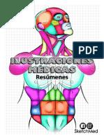 SketchMed Ilustraciones Médicas (M)