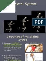 Skeletal System Powerpoint Edited