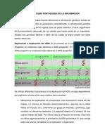Ácidos Nucleicos Como Portadores de La Información Genética