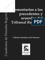 Libro Precedentes y Acuerdos