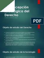 La Concepción Sociológica Del Derecho