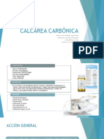 Calcarea Carbonica