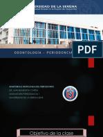 Anatomia e Histologia del Periodonto 2018 ULS.pdf