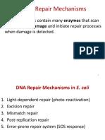DNA_Repair_Mechanisms-1.pdf