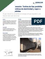 Case-Study-16-CHP-1003-SPA.pdf