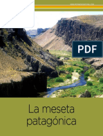 Meseta_Patagonica